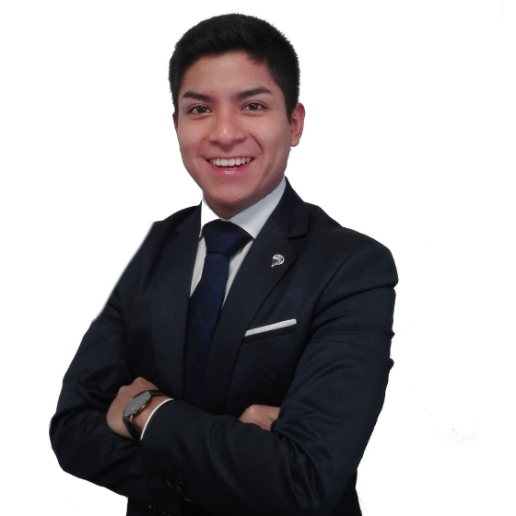 Luis Ariel Sanchez Salinas