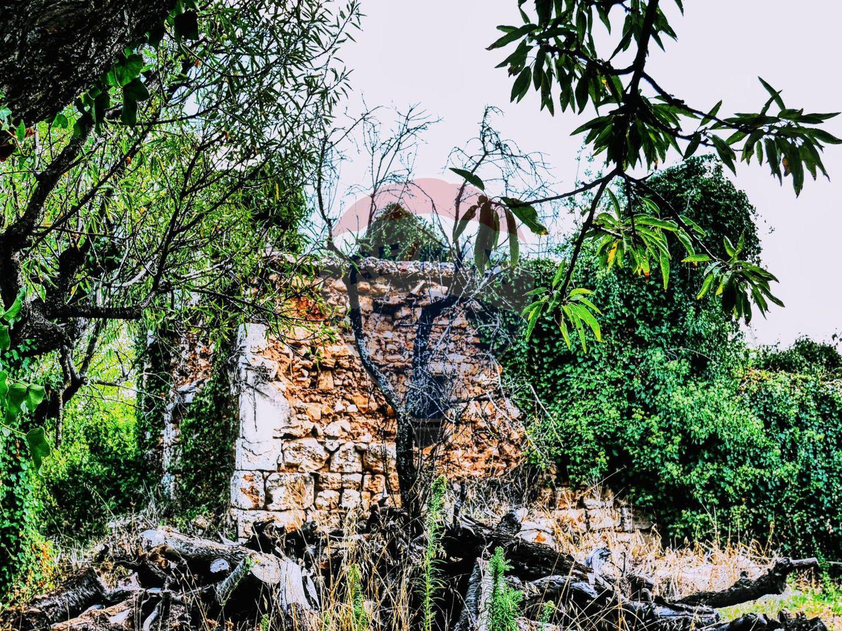 Cascina/Casale Conversano, BA Vendita - Foto 8