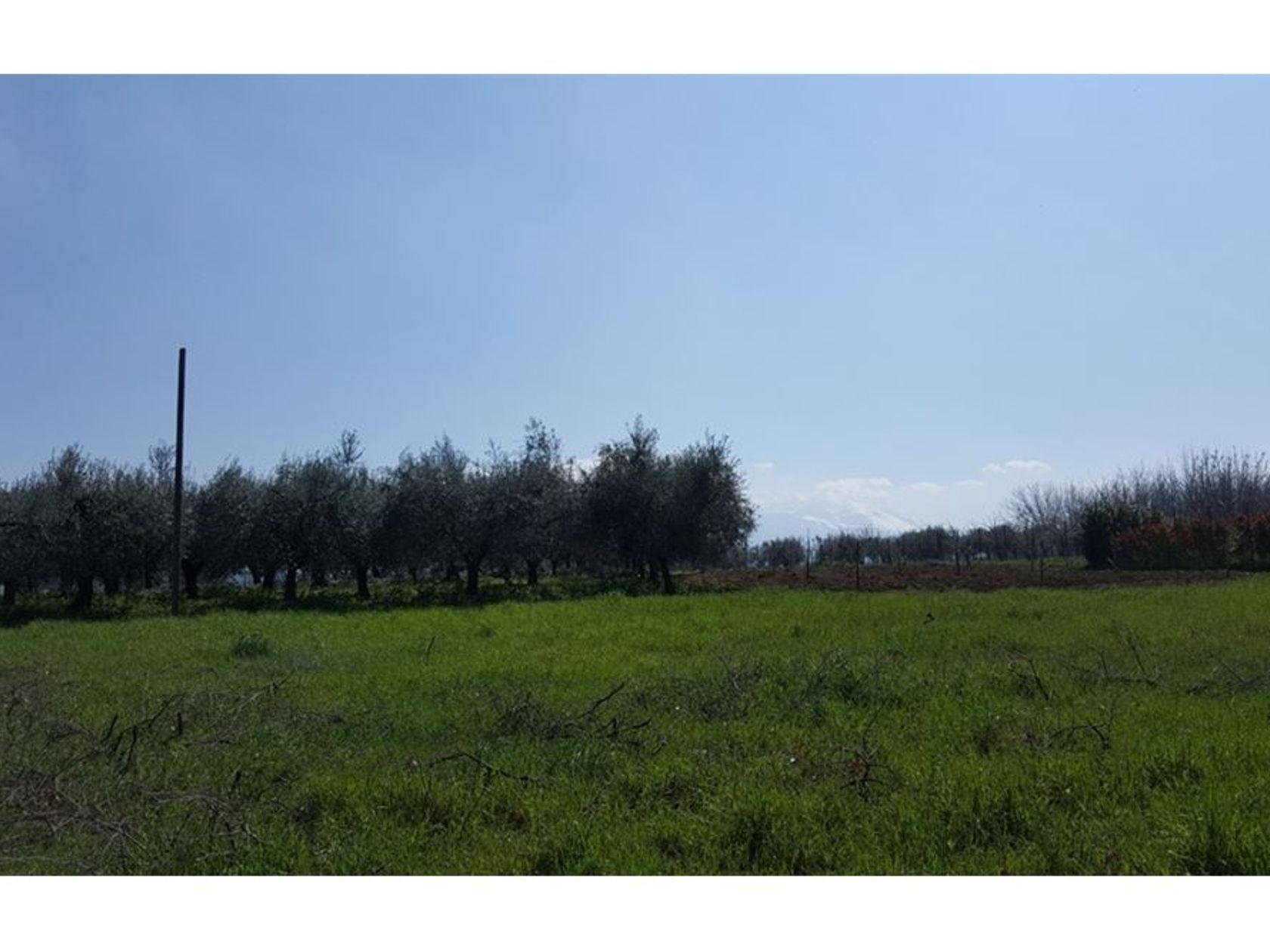Terreno Edificabile Nocciano, PE Vendita - Foto 3