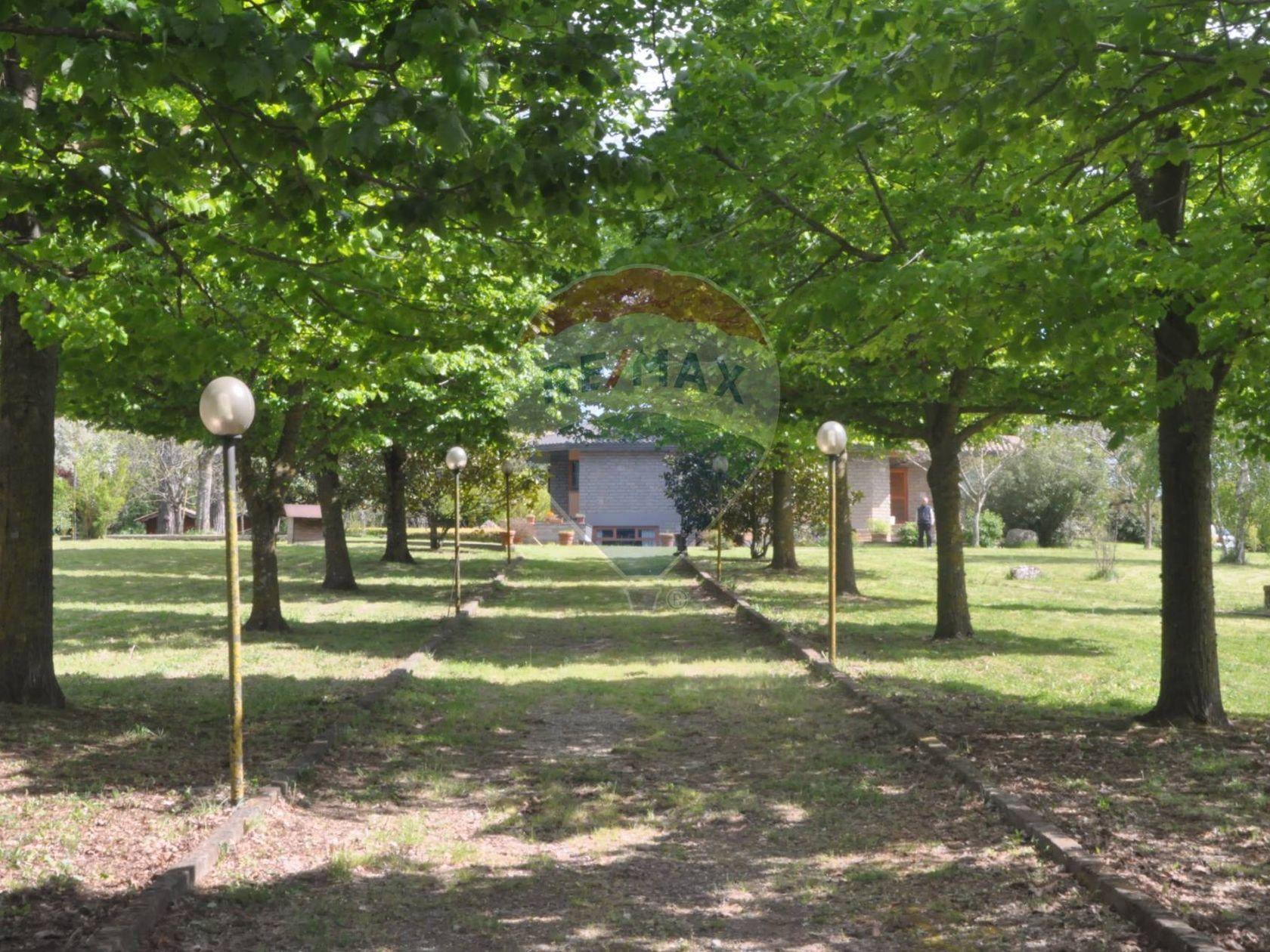 Villa singola Canale Monterano, RM Vendita - Foto 55