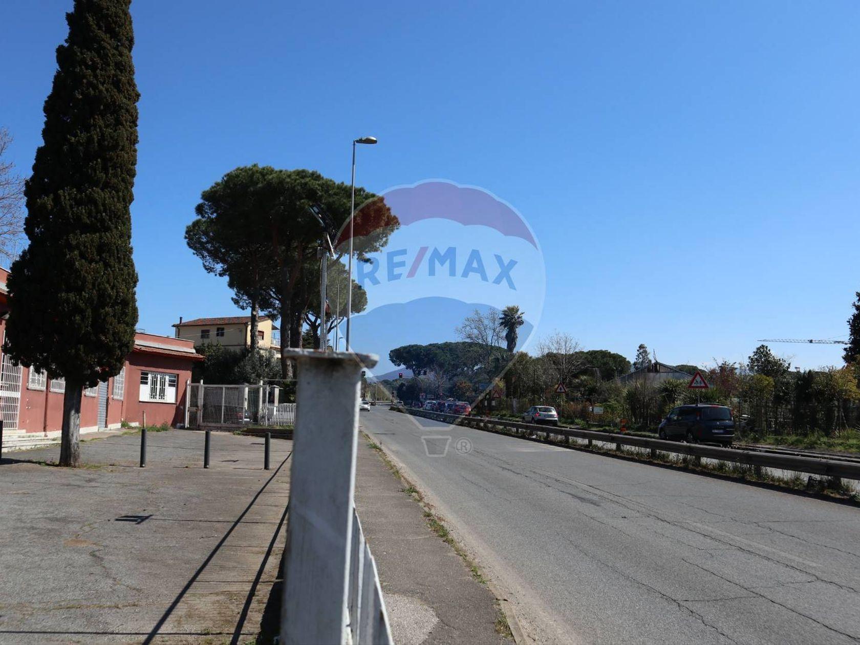 Commerciale Altro Vermicino, Frascati, RM Affitto - Foto 21