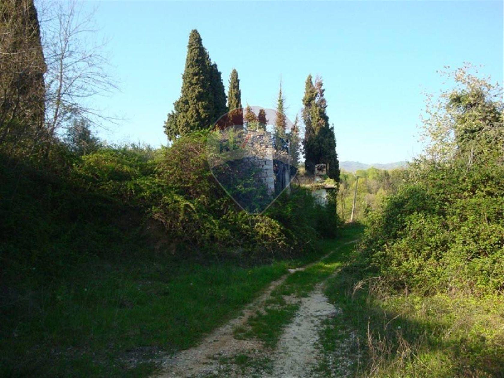 Terreno Grezzana, VR Vendita - Foto 8