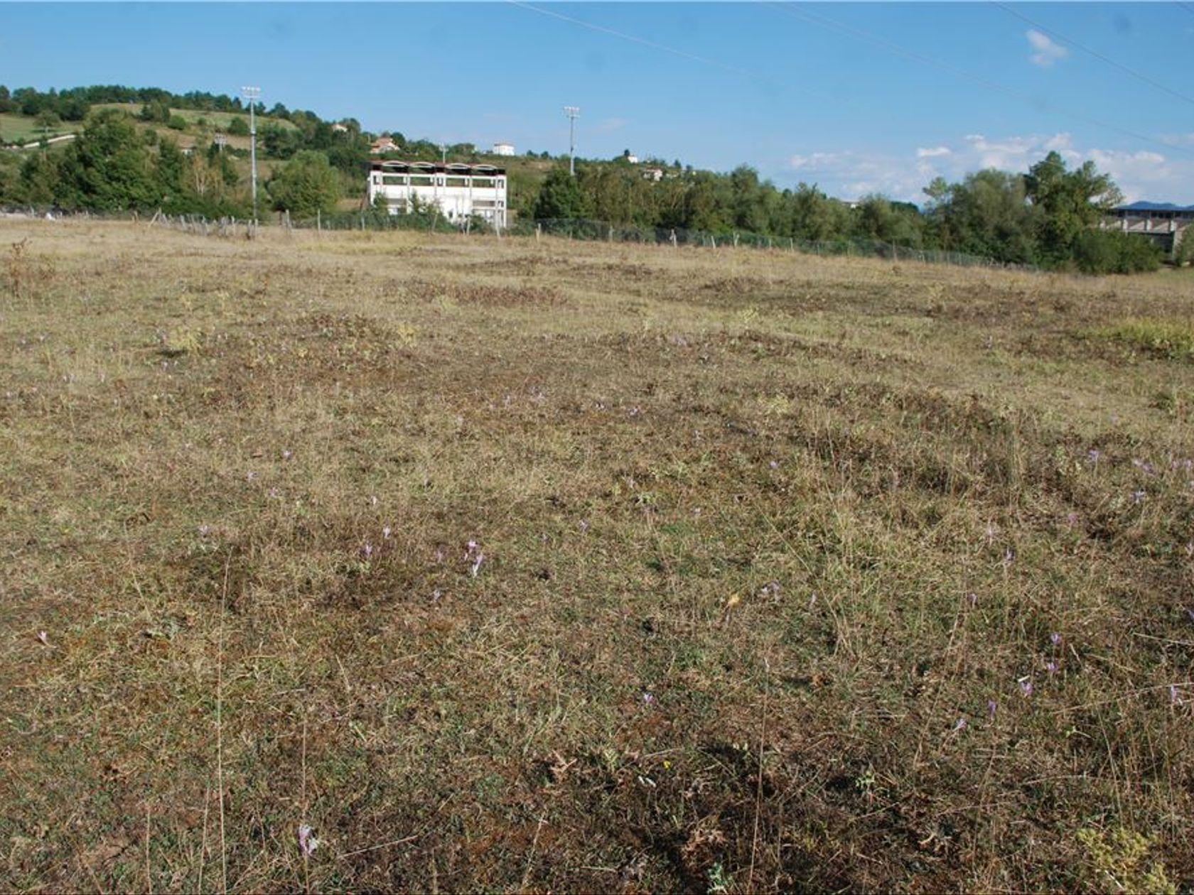 Terreno San Donato, Tagliacozzo, AQ Vendita - Foto 6
