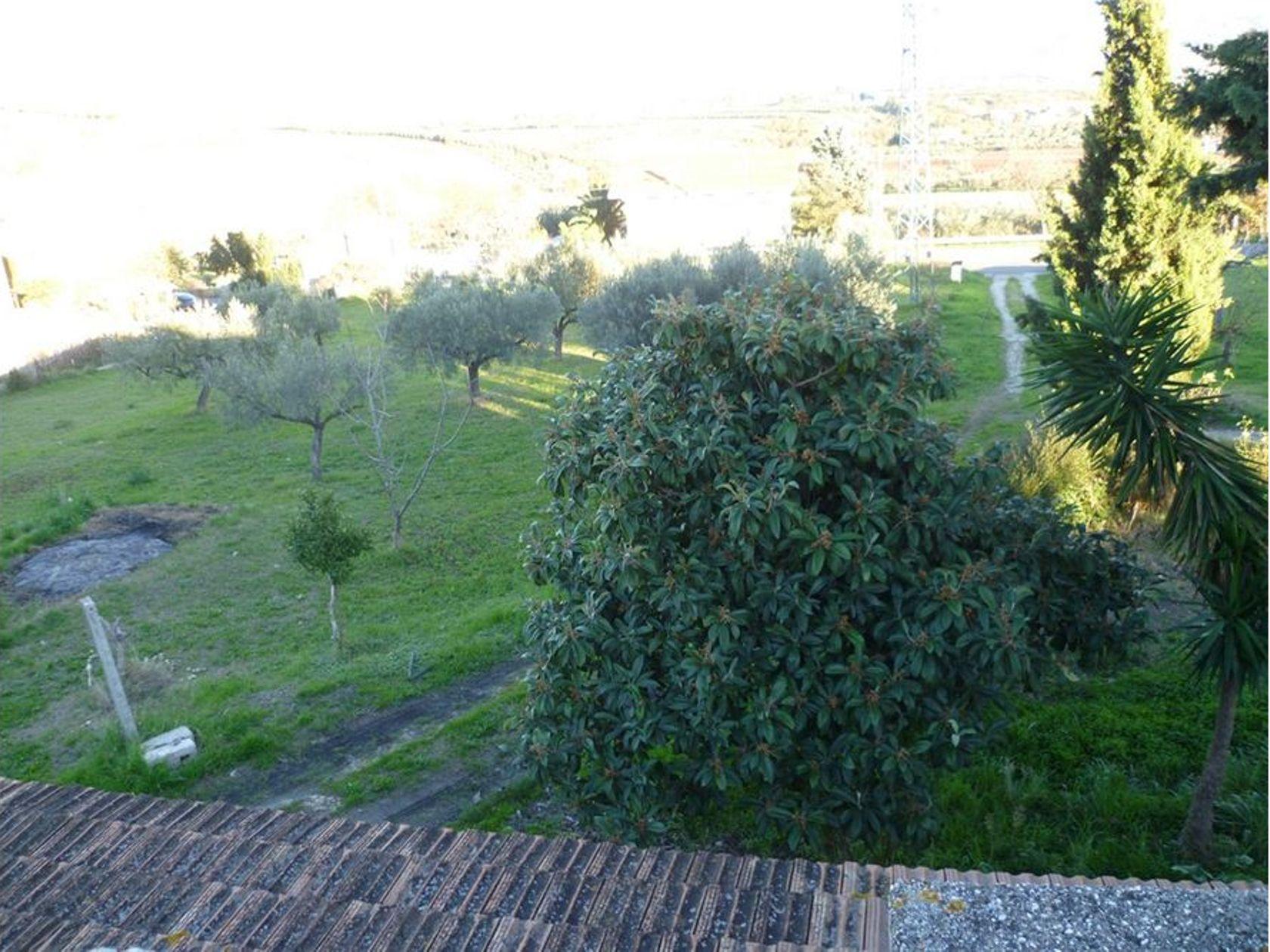 Terreno Lanciano, CH Vendita - Foto 9