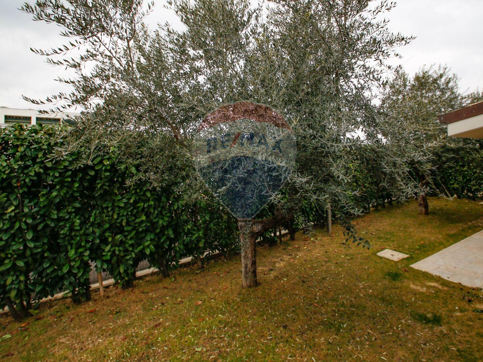 Villa singola Loreto Aprutino, PE Vendita - Foto 31