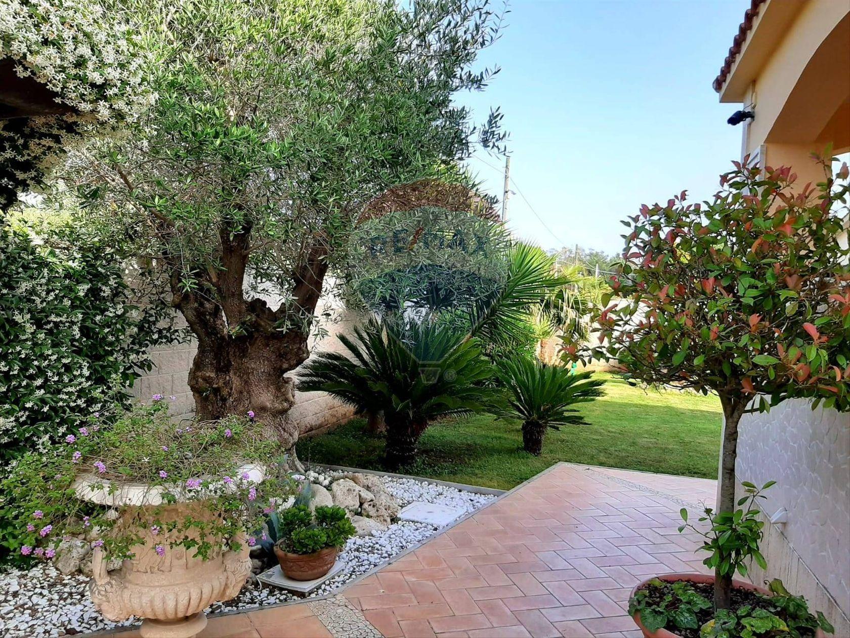 Villa singola Lido dei Pini, Anzio, RM Vendita - Foto 4