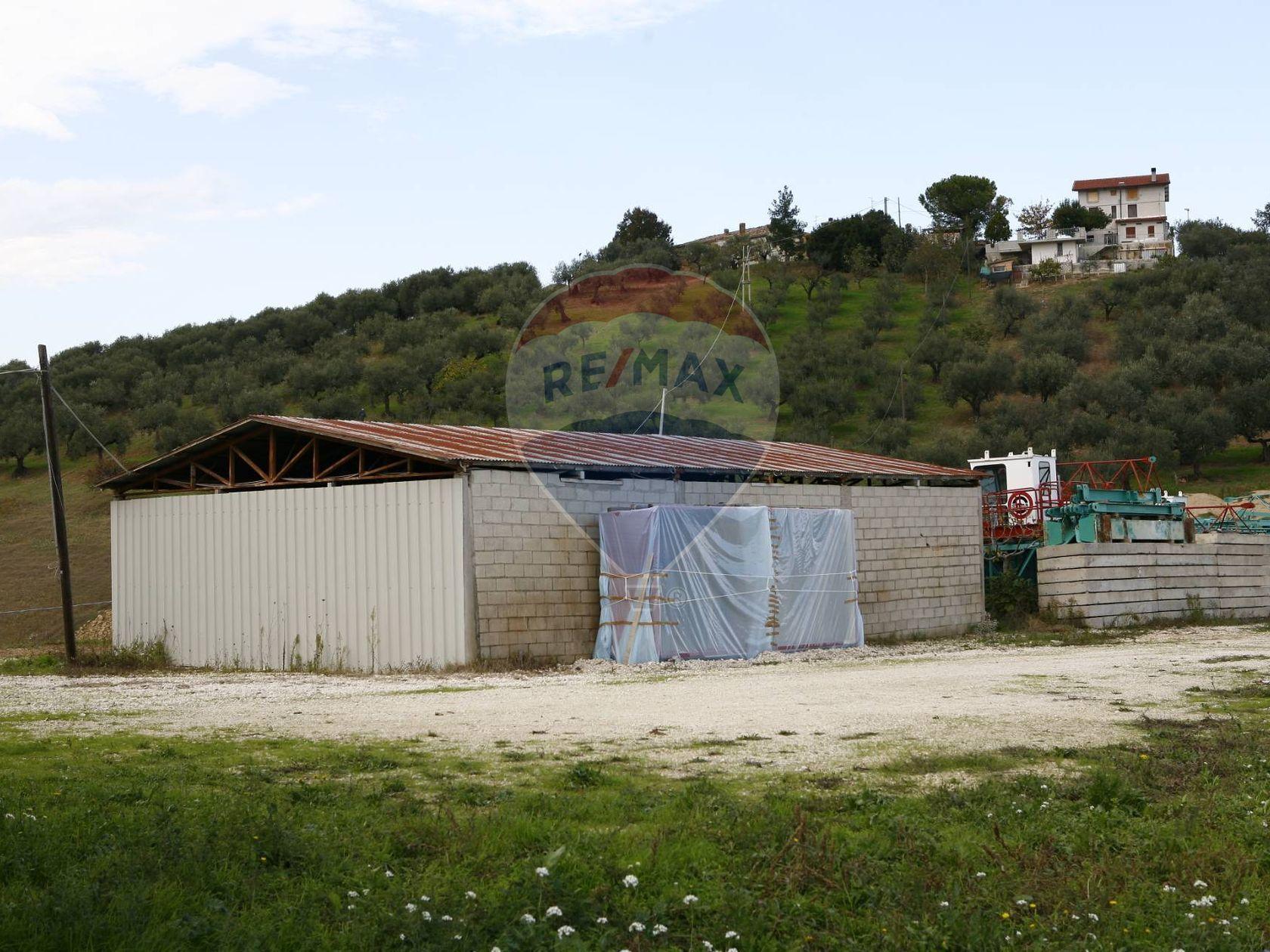 Cascina/Casale Senarica-Vertilina, Moscufo, PE Vendita - Foto 8