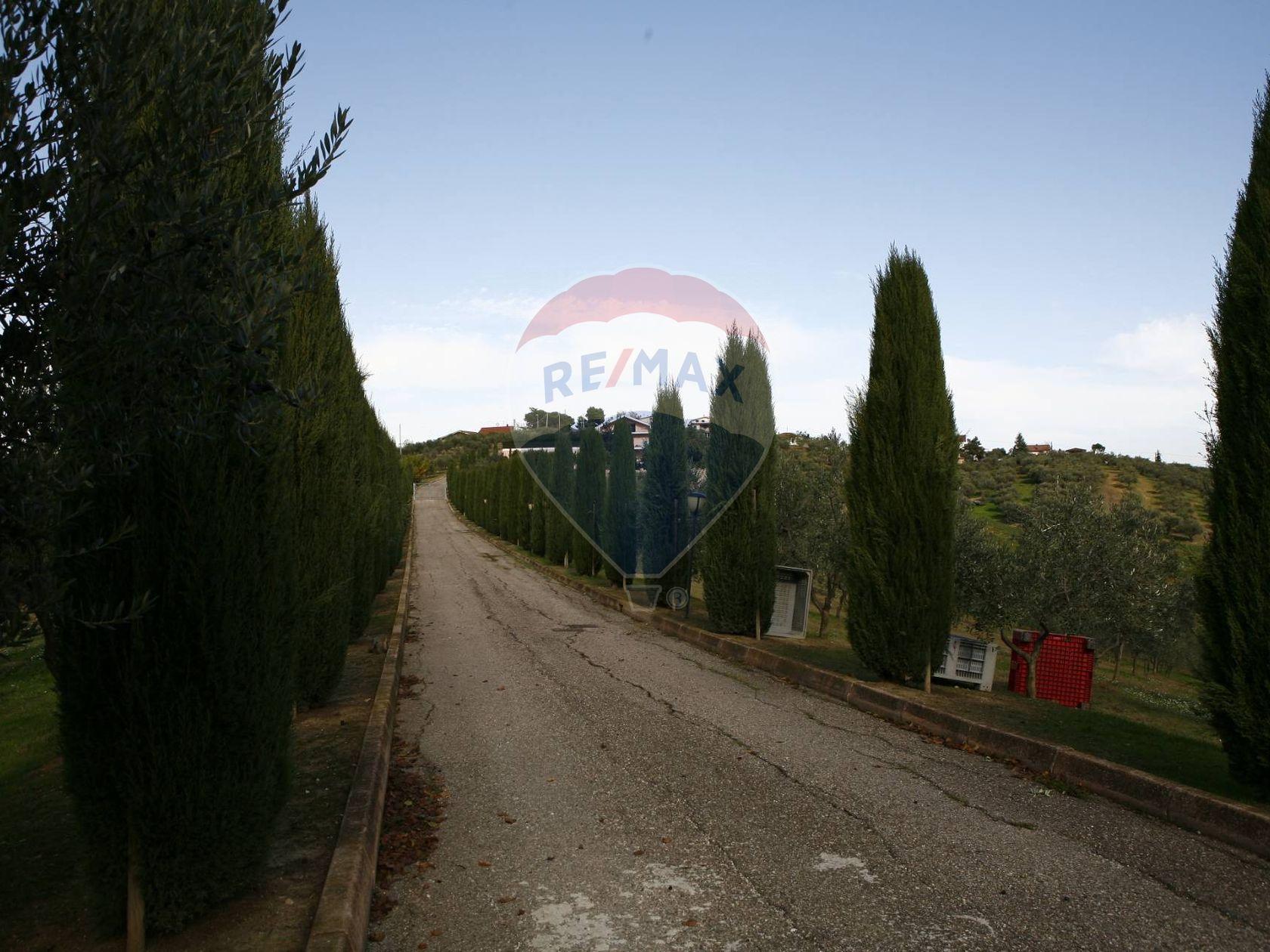 Casa Indipendente Senarica-Vertilina, Moscufo, PE Vendita - Foto 3