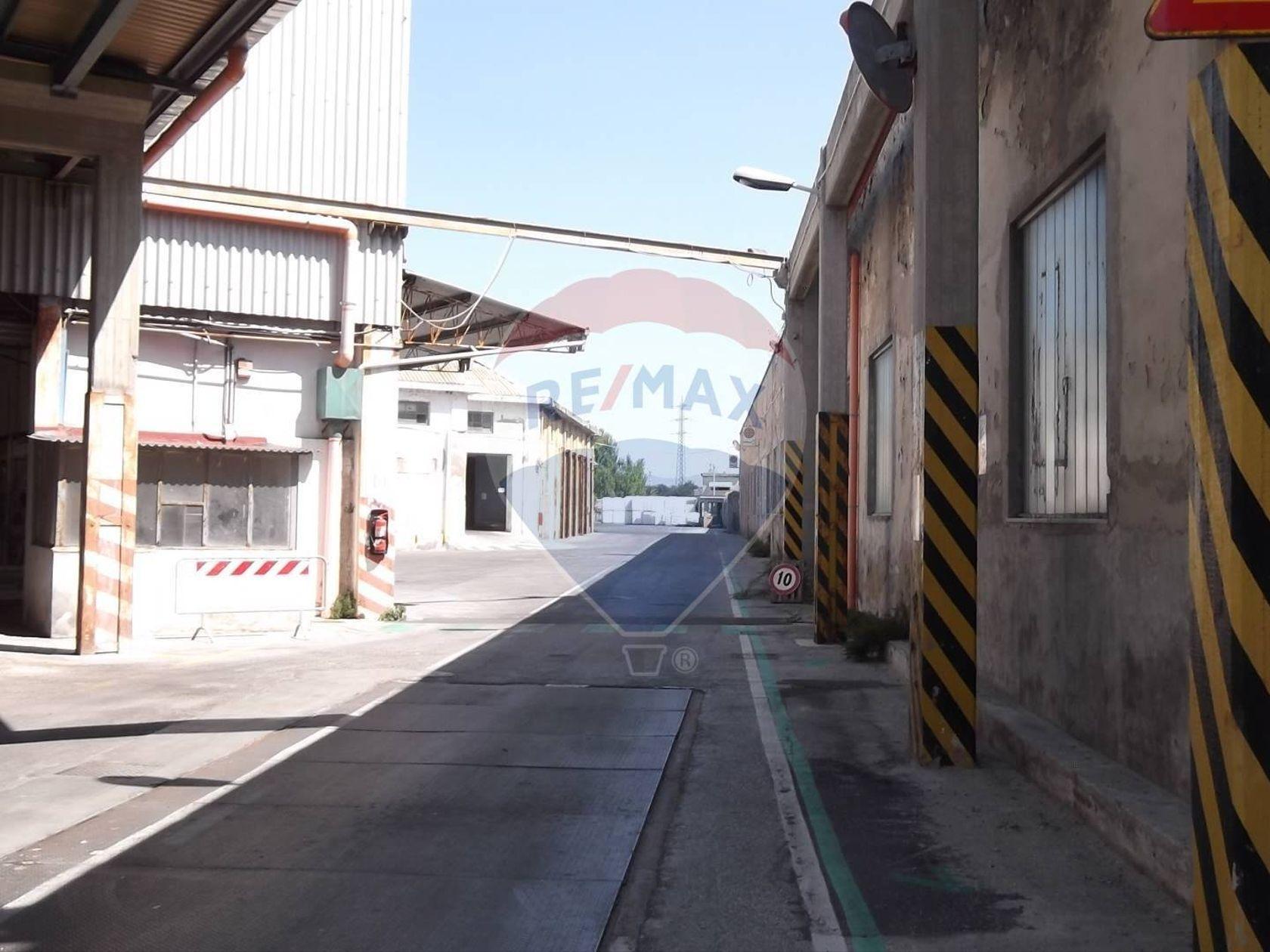 Capannone Industriale Lungomare, Livorno, LI Vendita - Foto 5