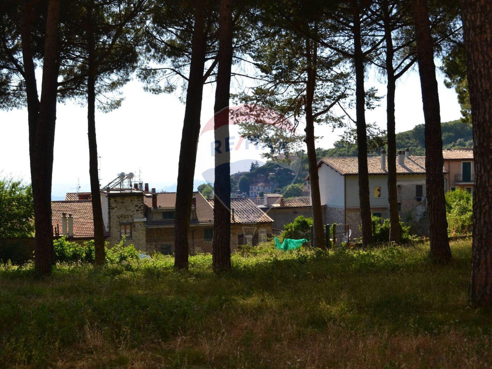 Appartamento San Polo dei Cavalieri, RM Vendita - Foto 20