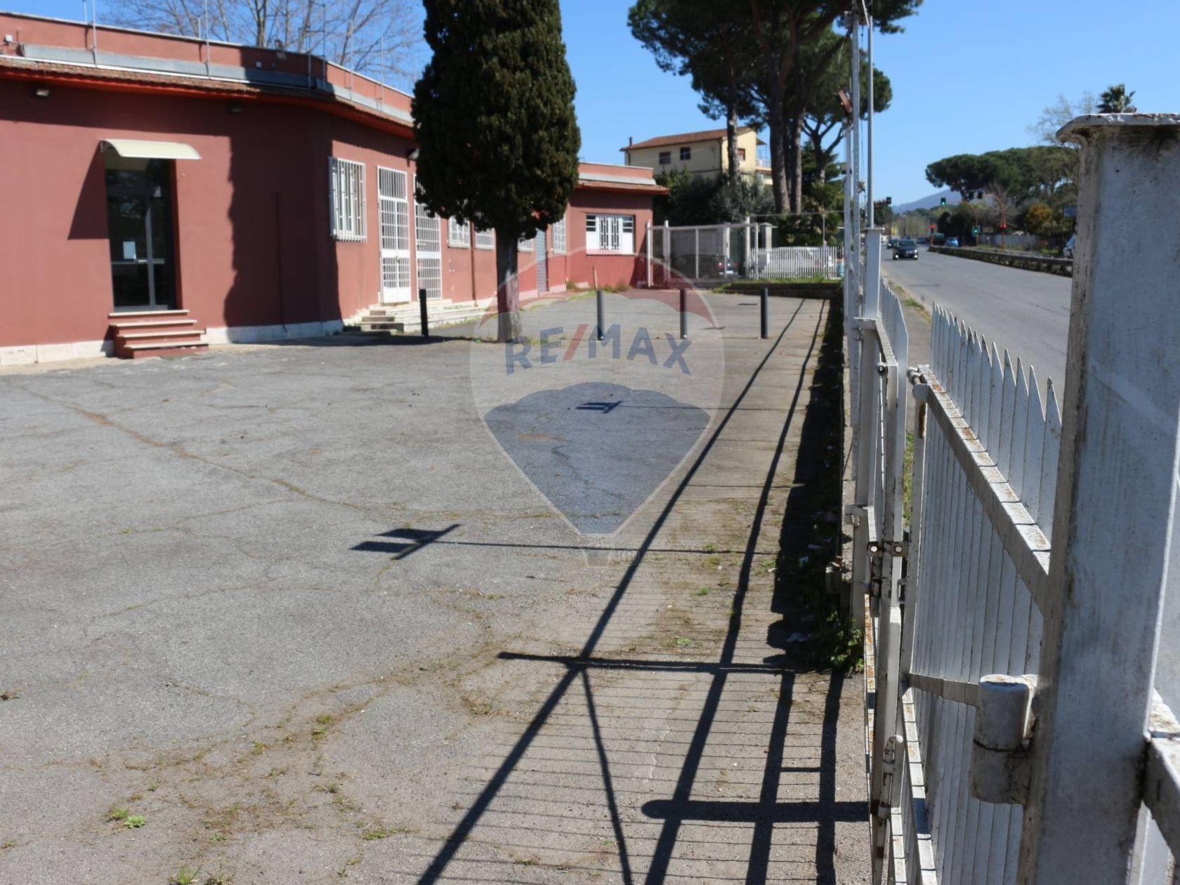 Commerciale Altro Vermicino, Frascati, RM Affitto - Foto 5