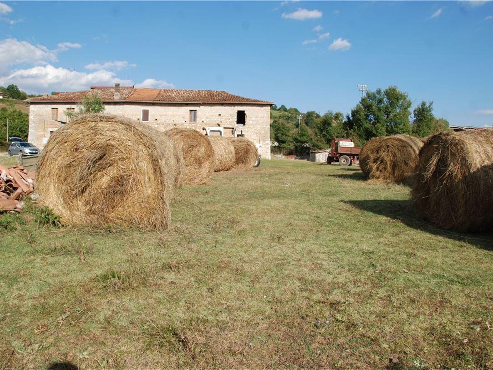 Terreno San Donato, Tagliacozzo, AQ Vendita - Foto 3