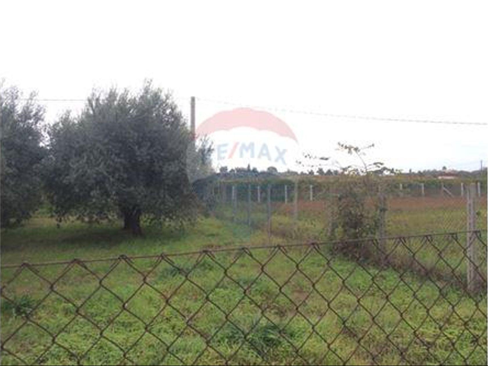 Attività Commerciale Velletri, RM Vendita - Foto 19