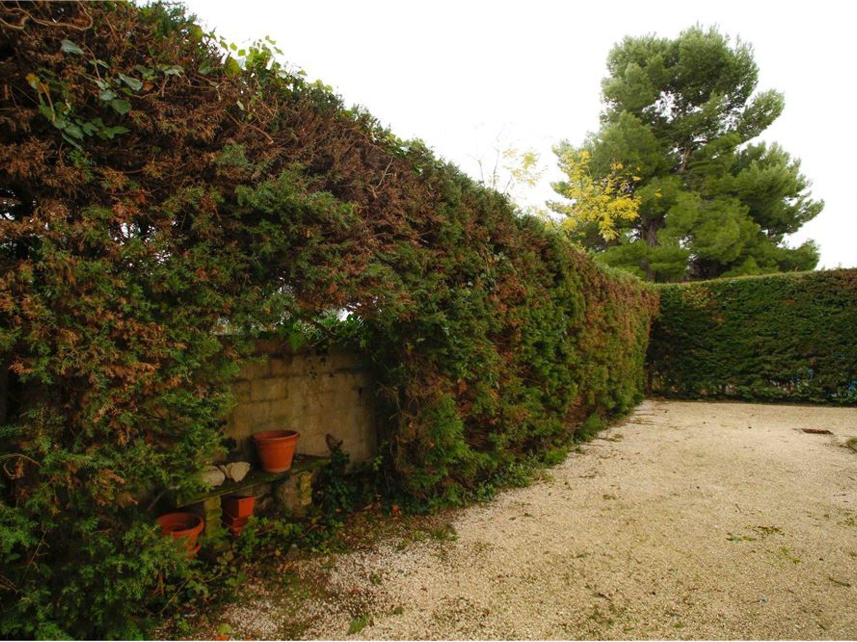 Casa Semindipendente Pescara-san Silvestro, Pescara, PE Vendita - Foto 3