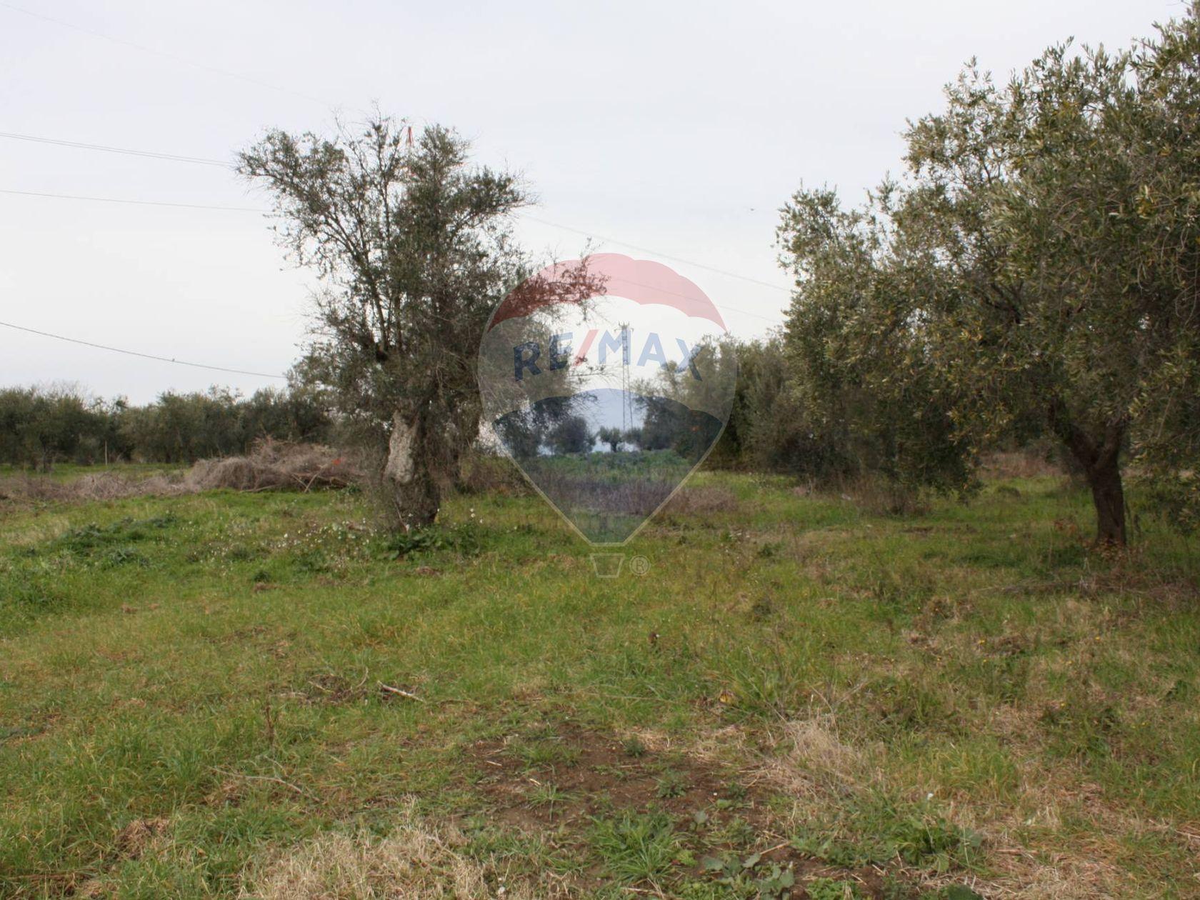Porzione di villa Lanciano, CH Vendita - Foto 5
