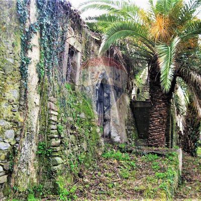 Rustico Giardini-Naxos, ME Vendita - Foto 3