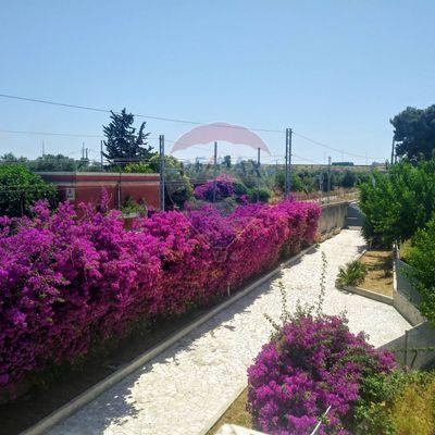 Villa singola S. Pasquale, Bari, BA Vendita - Foto 4