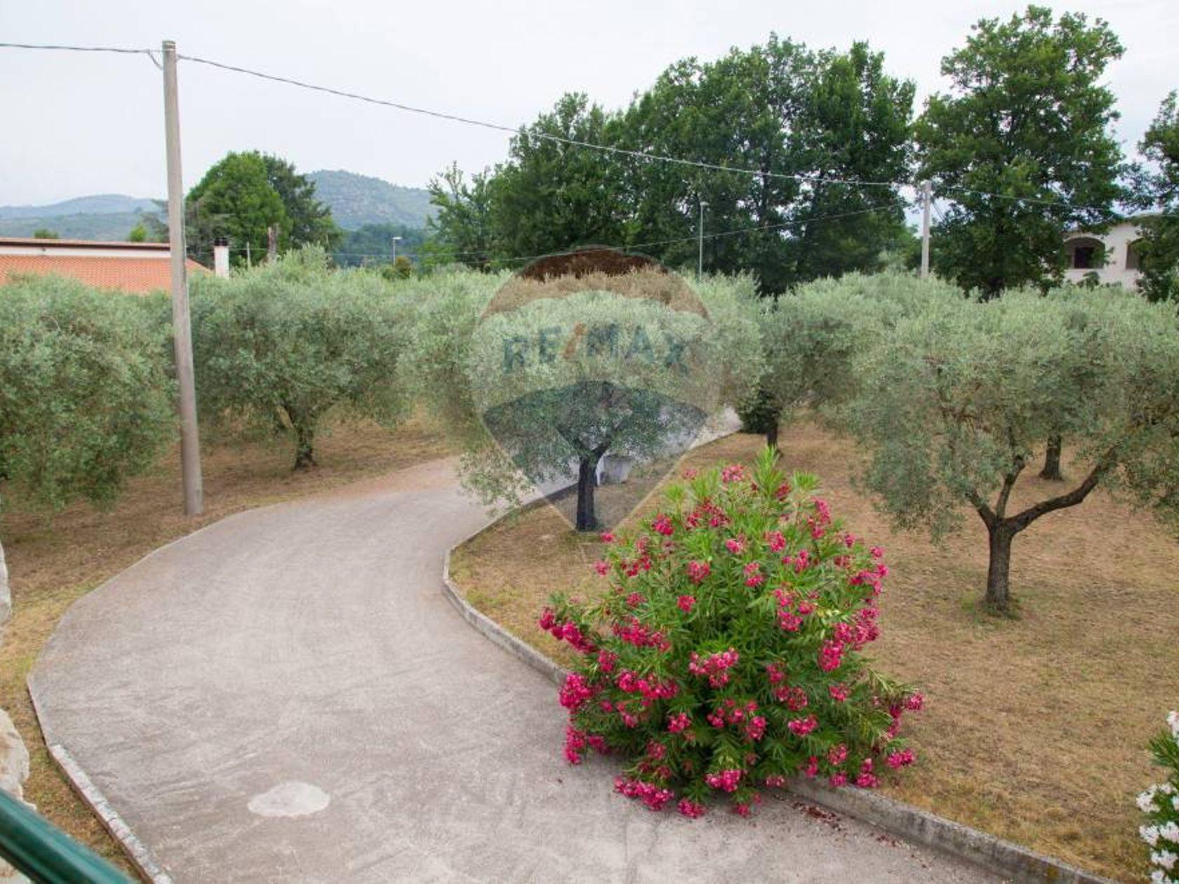 Casa Indipendente Alatri, FR Vendita - Foto 19