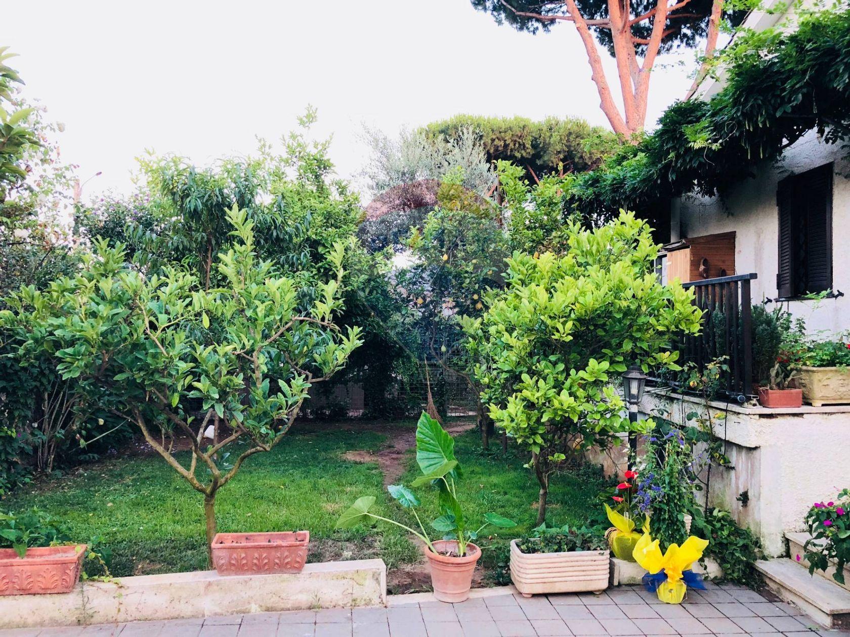 Villa singola Lavinio Lido di Enea, Anzio, RM Vendita - Foto 37