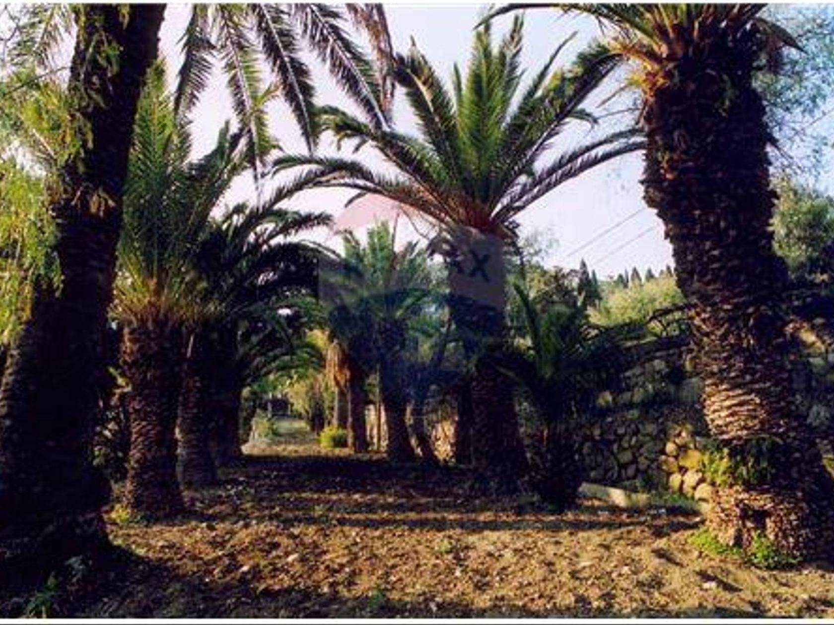 Villa singola Taormina, ME Vendita - Foto 43