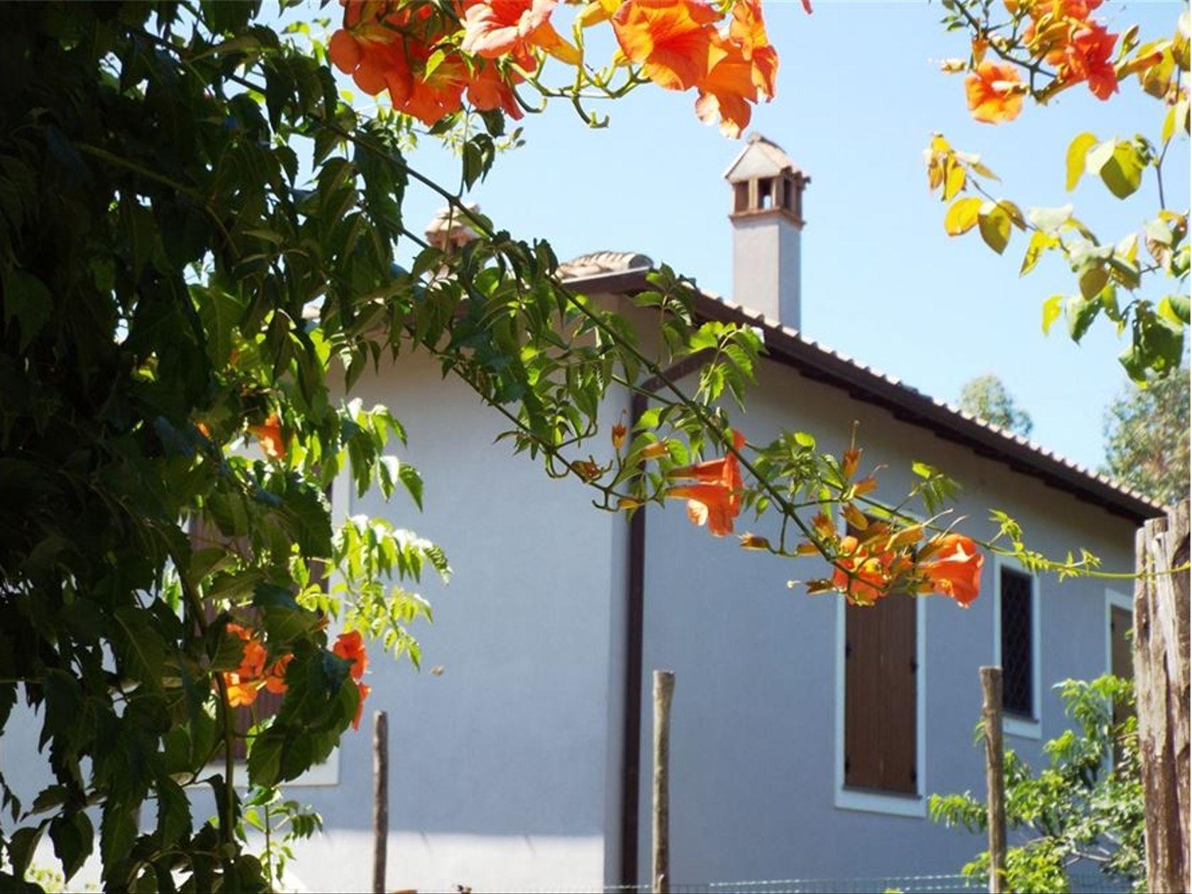 Villa singola Genzano di Roma, RM Vendita - Foto 43