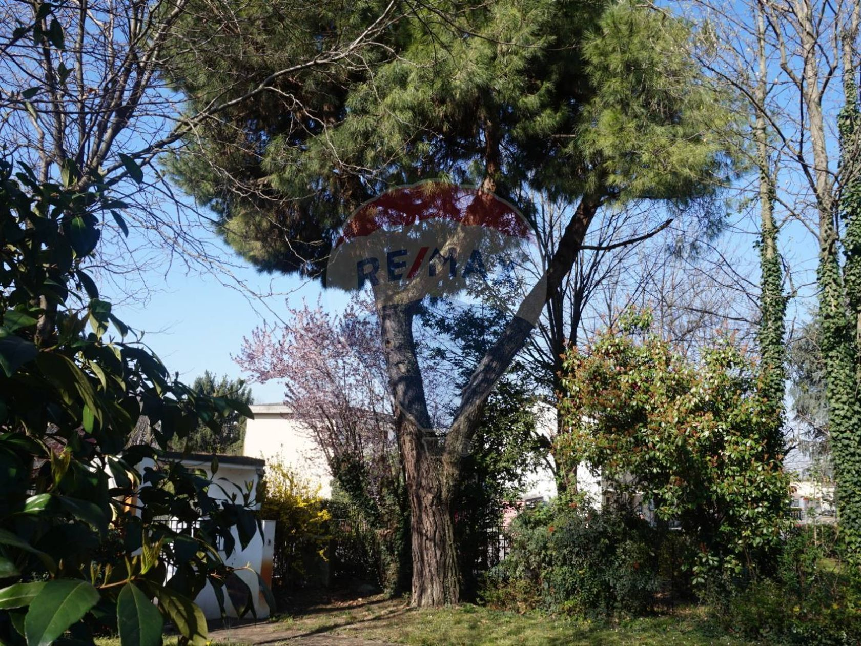 Villa singola Manerbio, BS Vendita - Foto 3