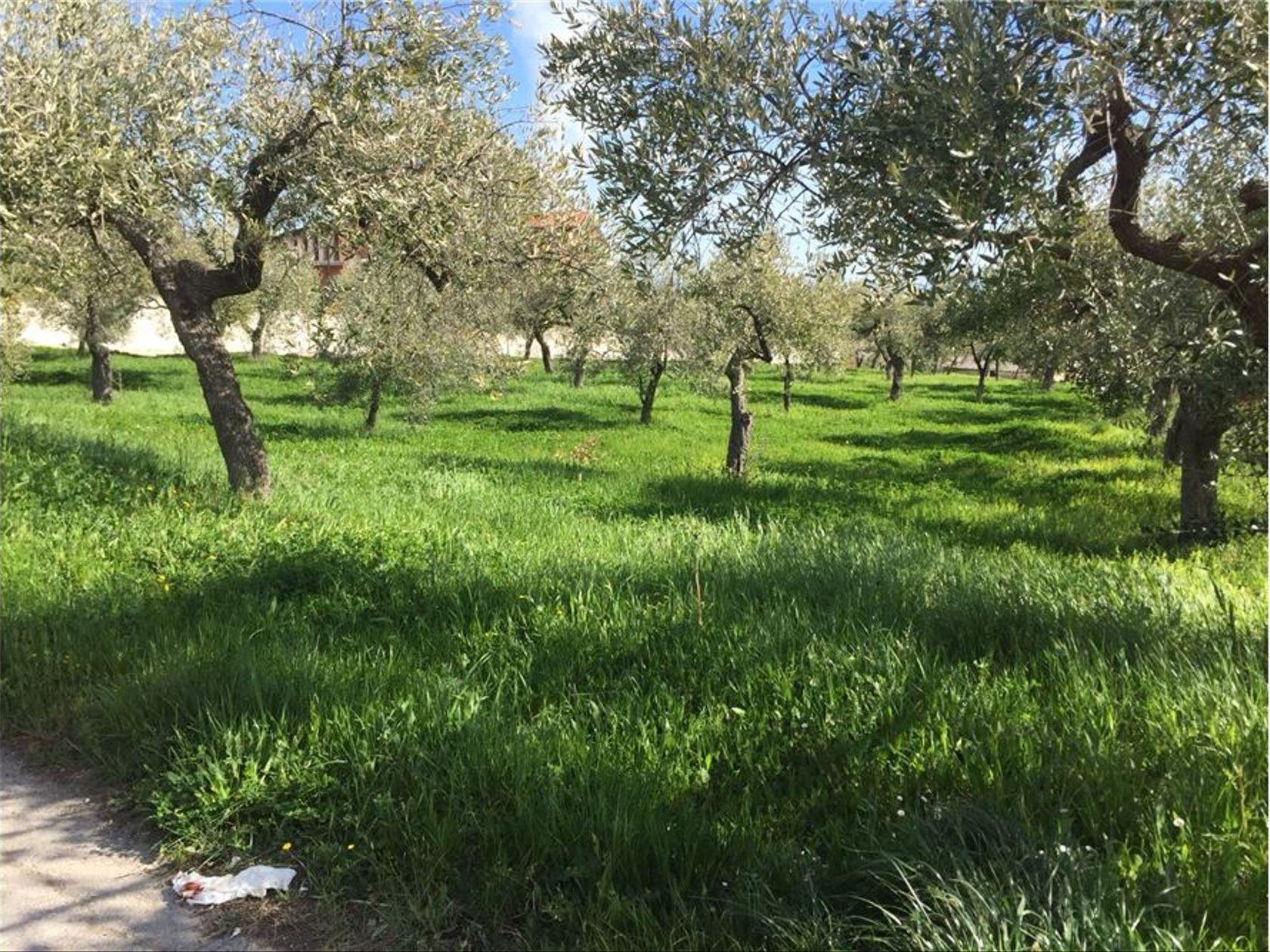 Terreno Edificabile Lanciano, CH Vendita - Foto 2