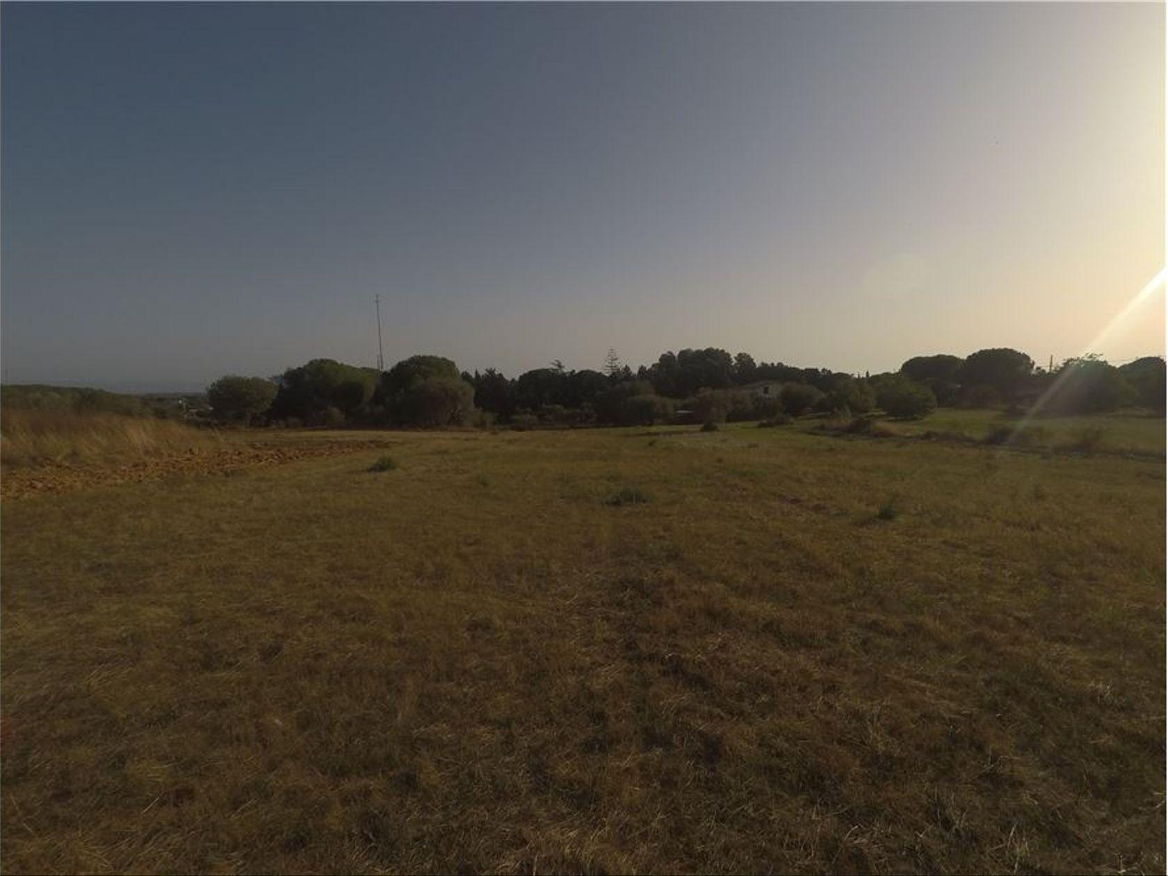 Terreno Edificabile Caltagirone, CT Vendita - Foto 6