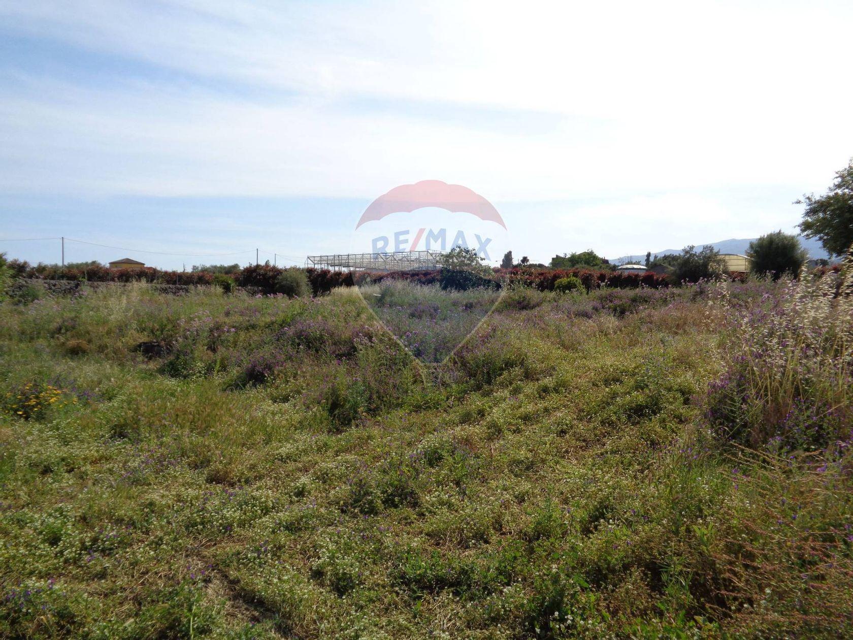 Terreno Altarello, Giarre, CT Vendita - Foto 5
