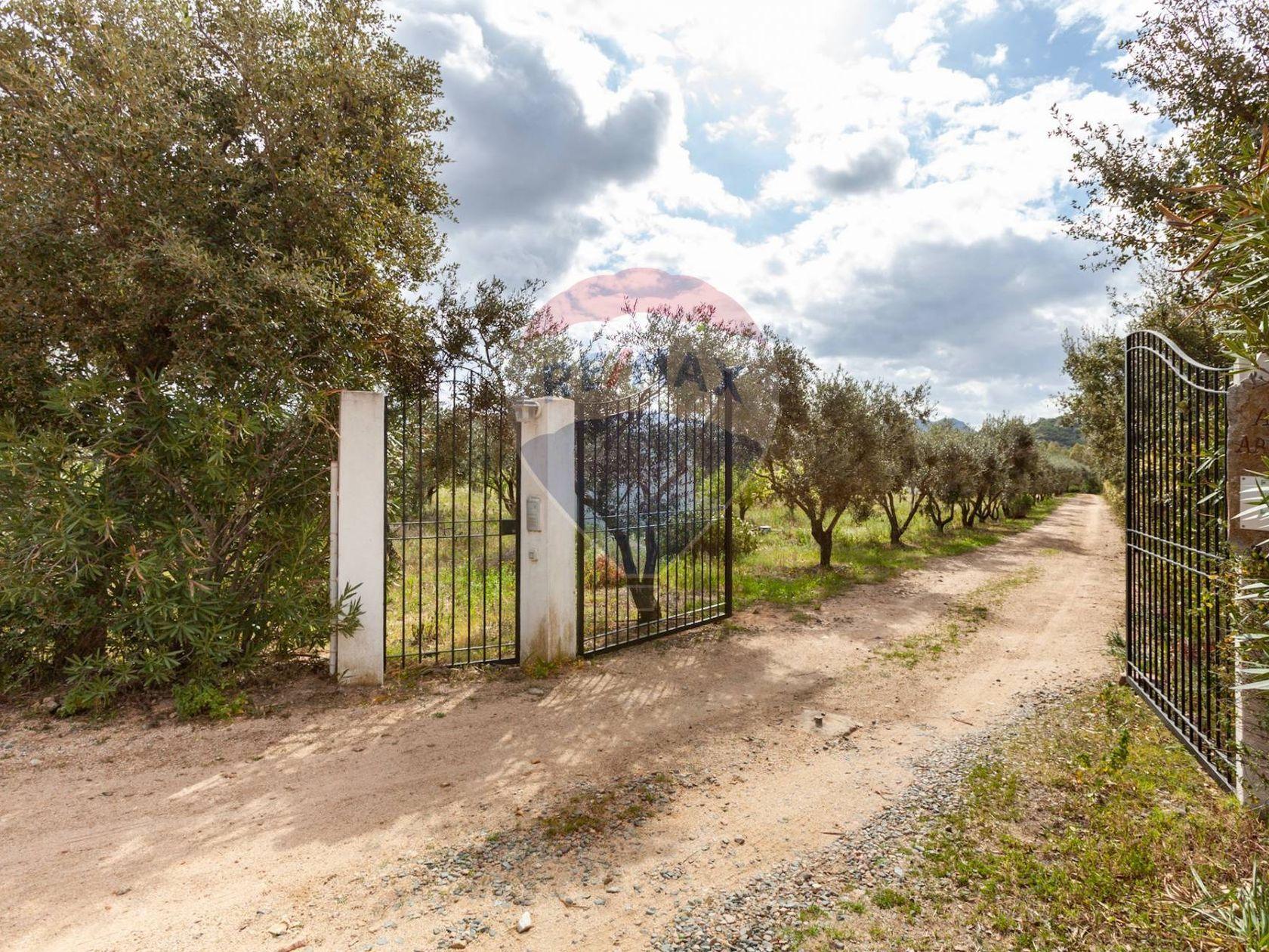 Cascina/Casale Tuerra I, San Vito, CA Vendita - Foto 9