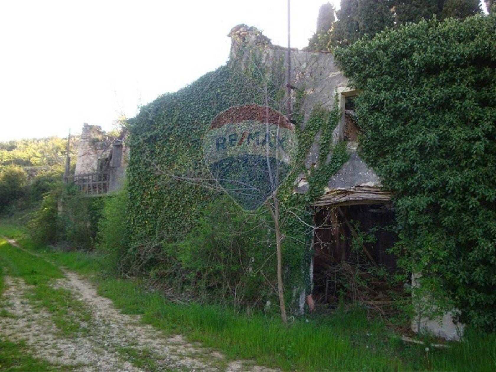 Terreno Grezzana, VR Vendita - Foto 11