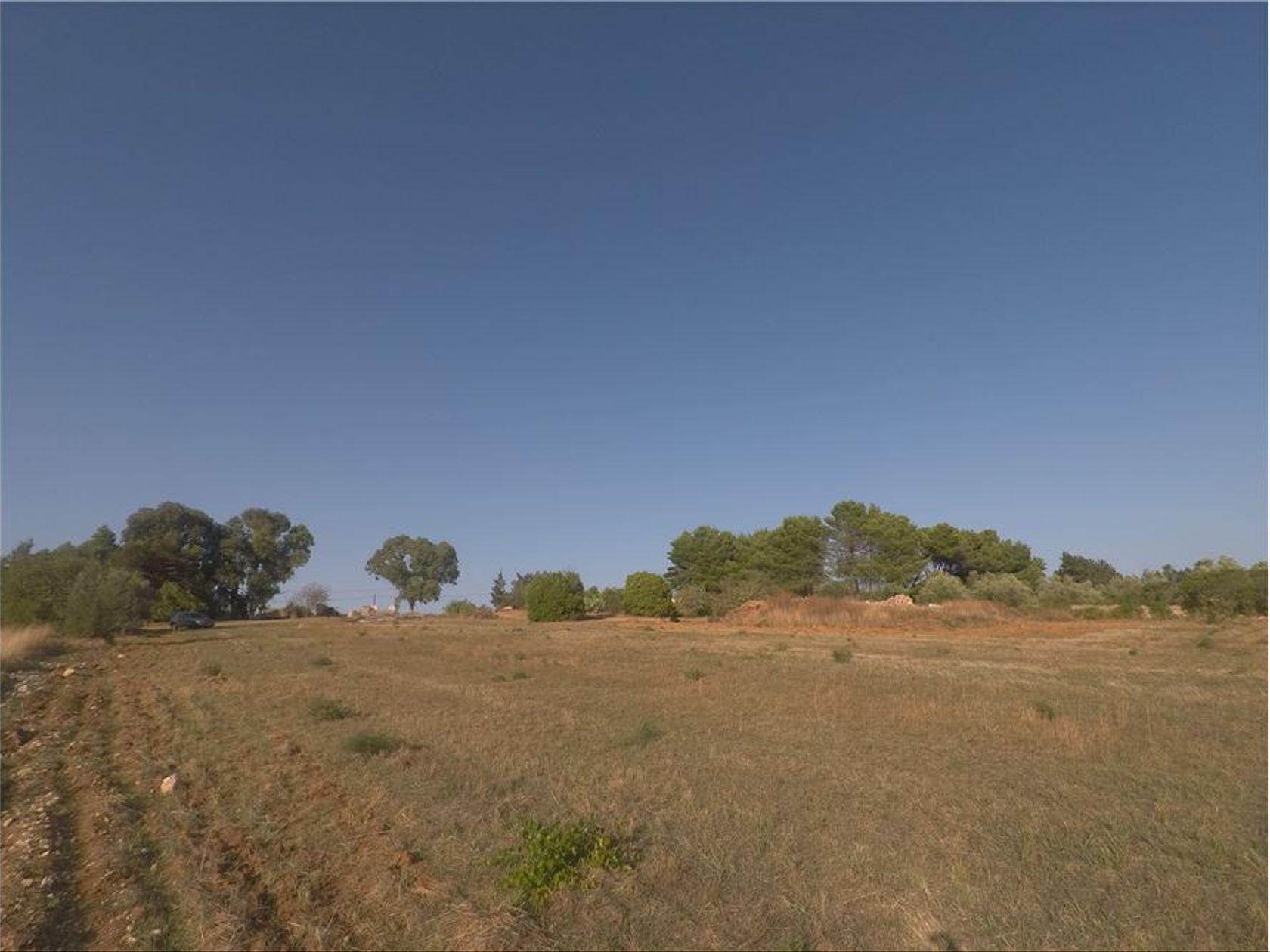 Terreno Edificabile Caltagirone, CT Vendita - Foto 8