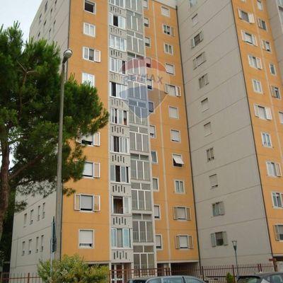 Appartamento Borgo Venezia, Verona, VR Vendita - Foto 3