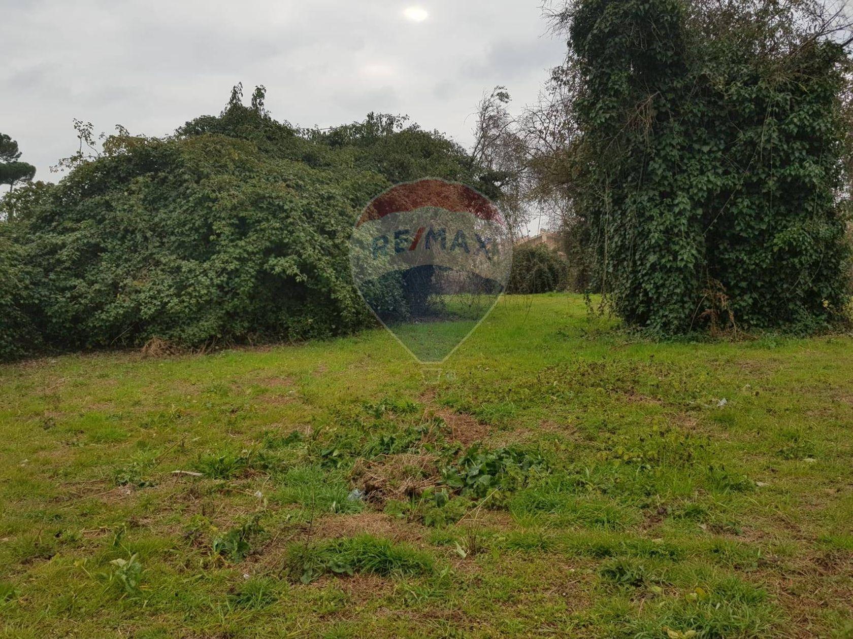 Terreno Edificabile Lariano, RM Vendita - Foto 4