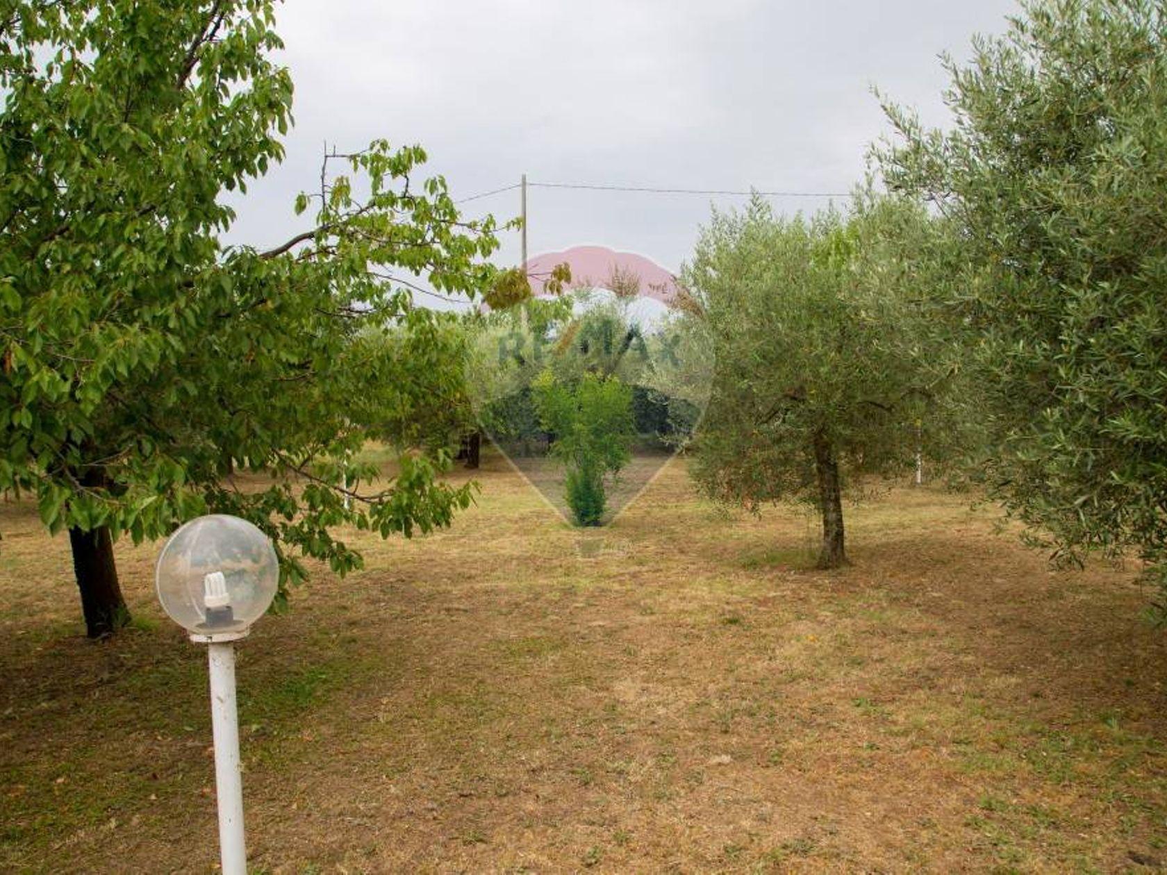 Casa Indipendente Alatri, FR Vendita - Foto 34