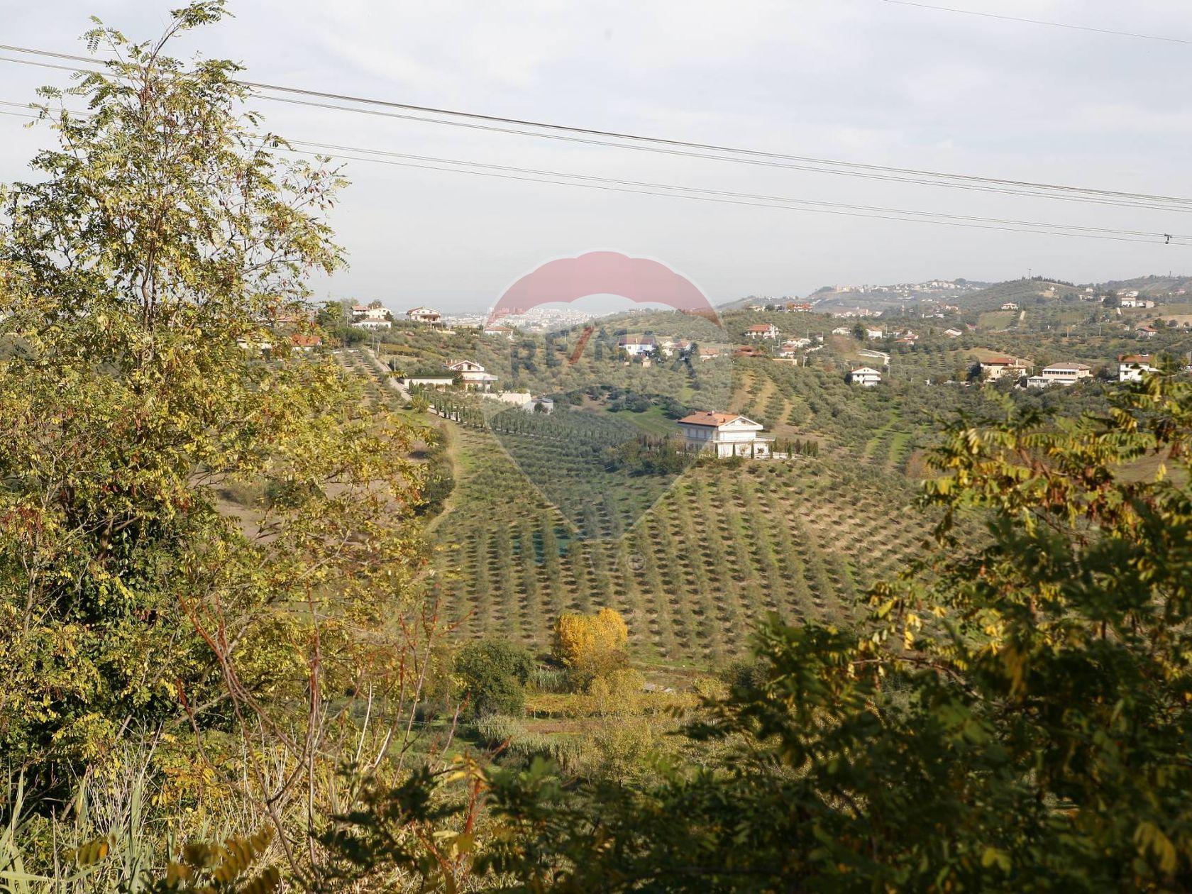 Casa Indipendente Senarica-Vertilina, Moscufo, PE Vendita - Foto 9