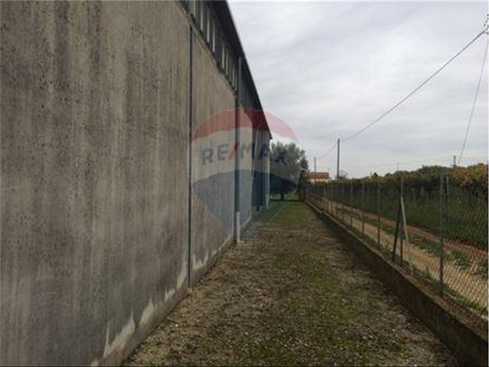 Attività Commerciale Velletri, RM Vendita - Foto 3