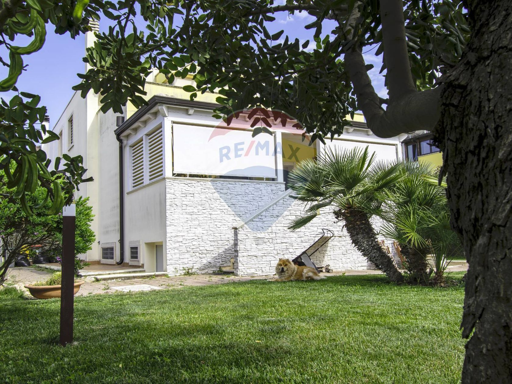 Villa o villino Noicattaro, BA Vendita - Foto 4