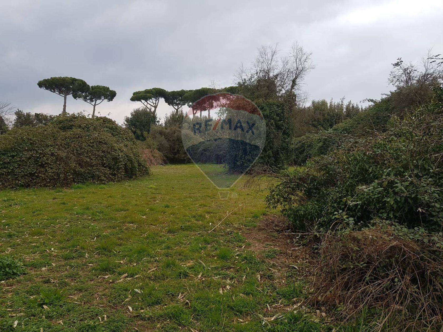 Terreno Edificabile Lariano, RM Vendita - Foto 5