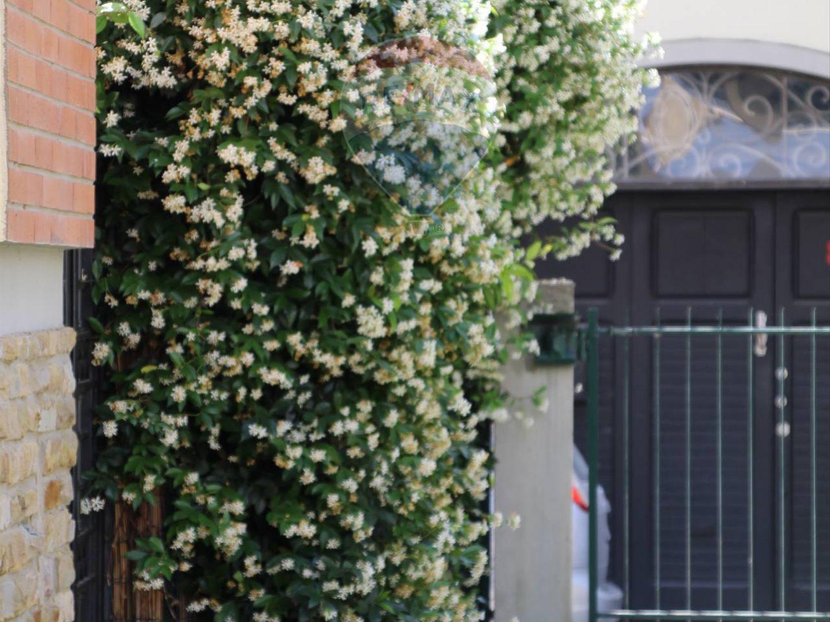 Appartamento Europa, Firenze, FI Vendita - Foto 31