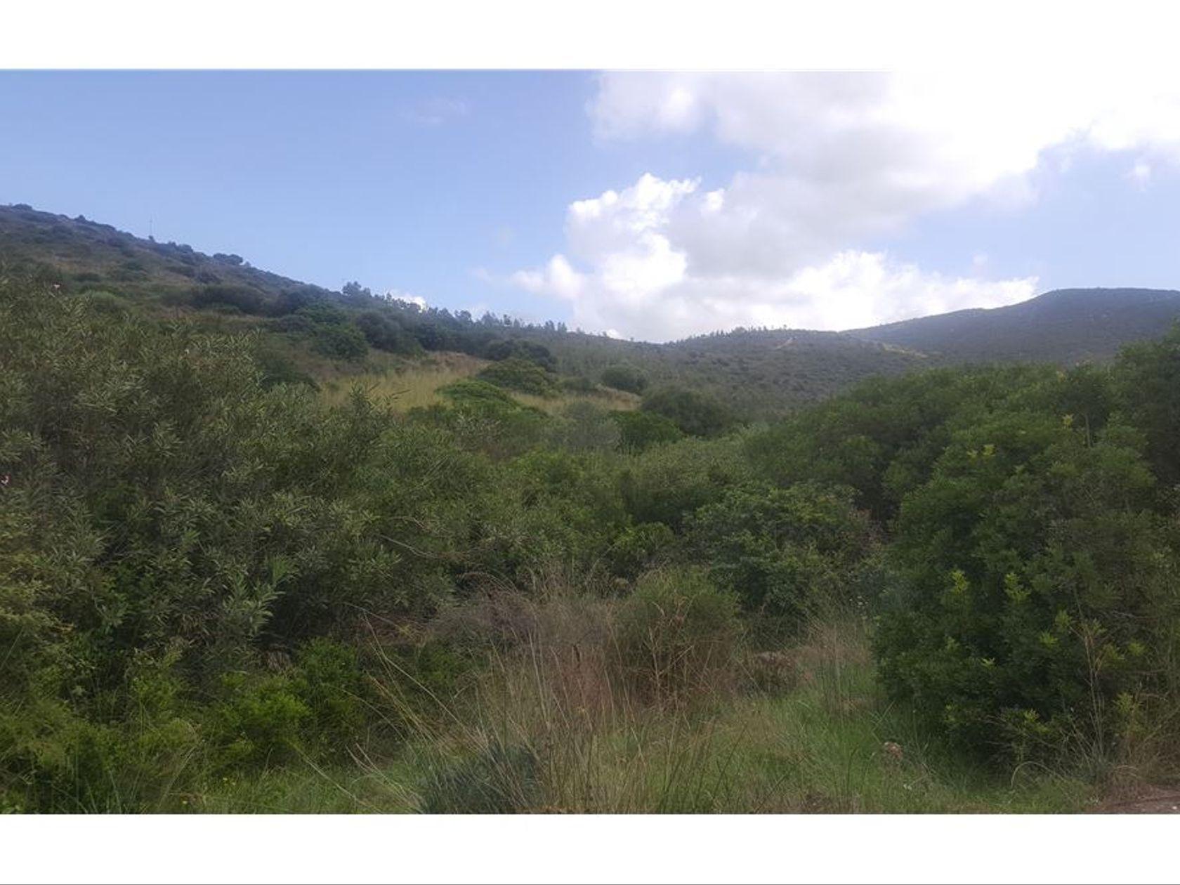 Terreno Zona Centro, Maracalagonis, CA Vendita - Foto 12