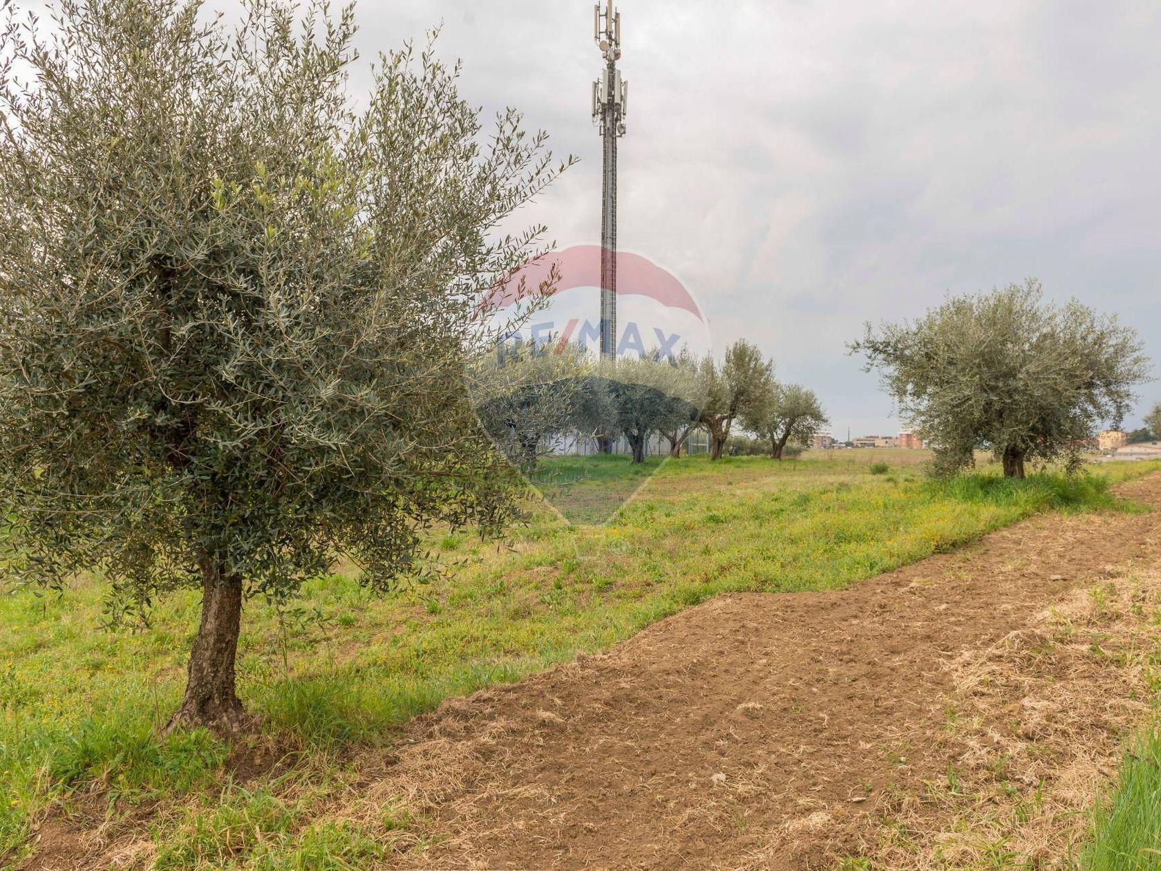 Terreno Roma - Castelverde - Villaggio Prenestino, Roma, RM Vendita - Foto 4