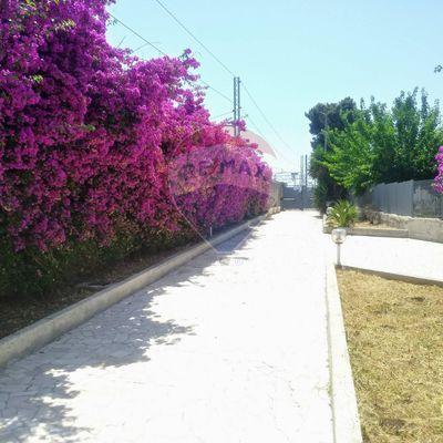 Villa singola S. Pasquale, Bari, BA Vendita - Foto 2