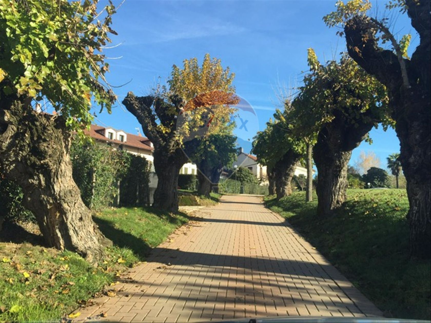 Casa Indipendente Chieri, TO Vendita - Foto 8