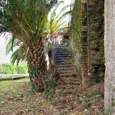 Rustico Giardini-Naxos, ME Vendita - Foto 7