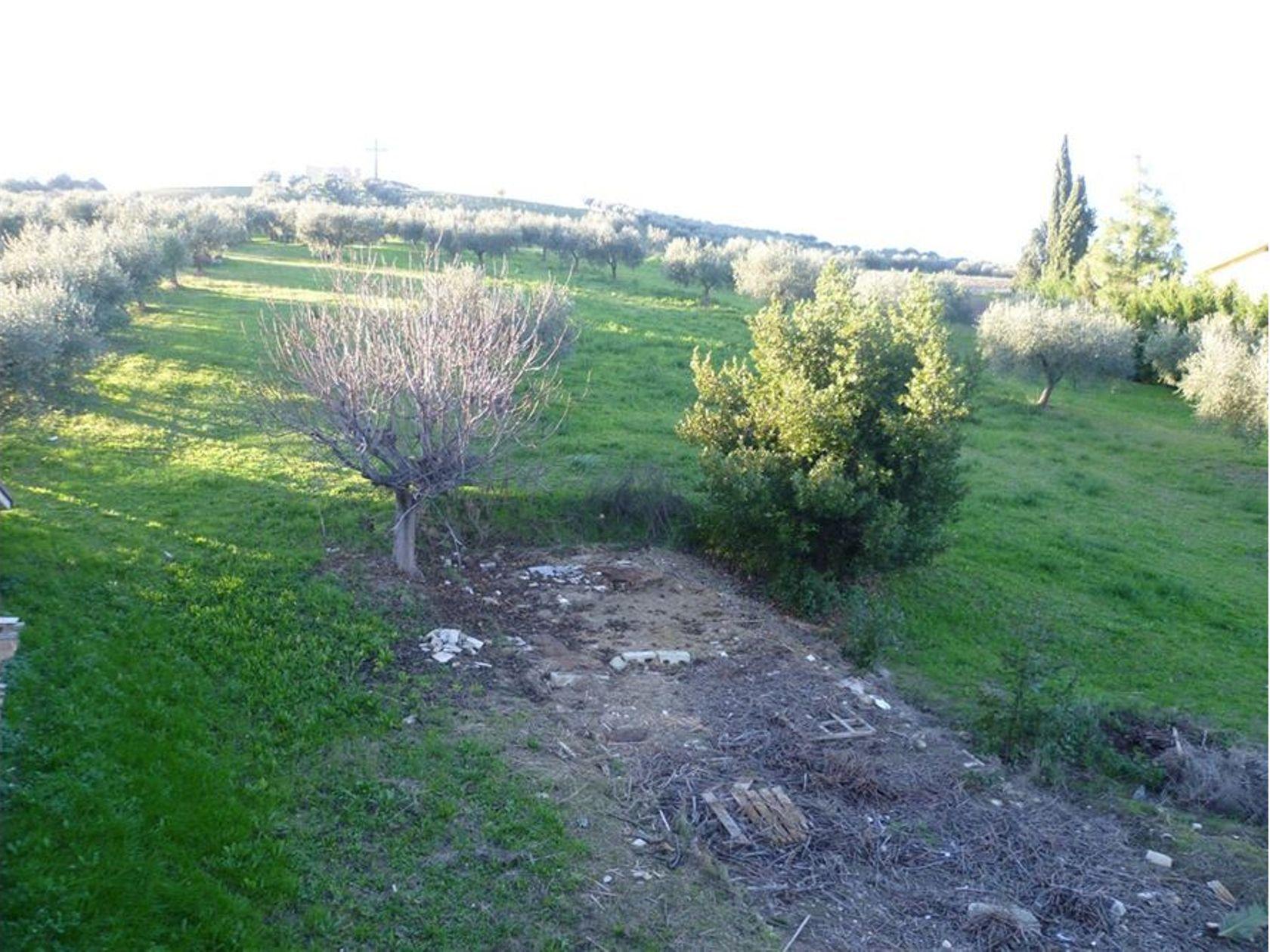 Terreno Lanciano, CH Vendita - Foto 11