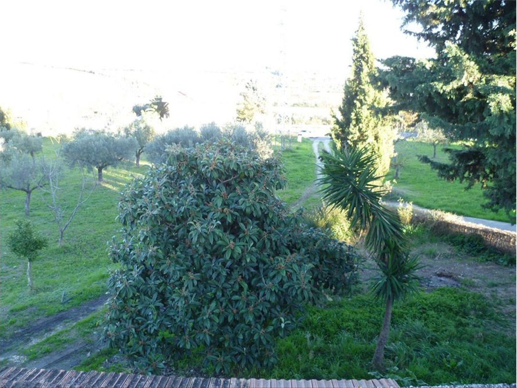 Terreno Lanciano, CH Vendita - Foto 10