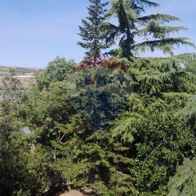 Porzione di villa Pergusa, Enna, EN Vendita - Foto 4