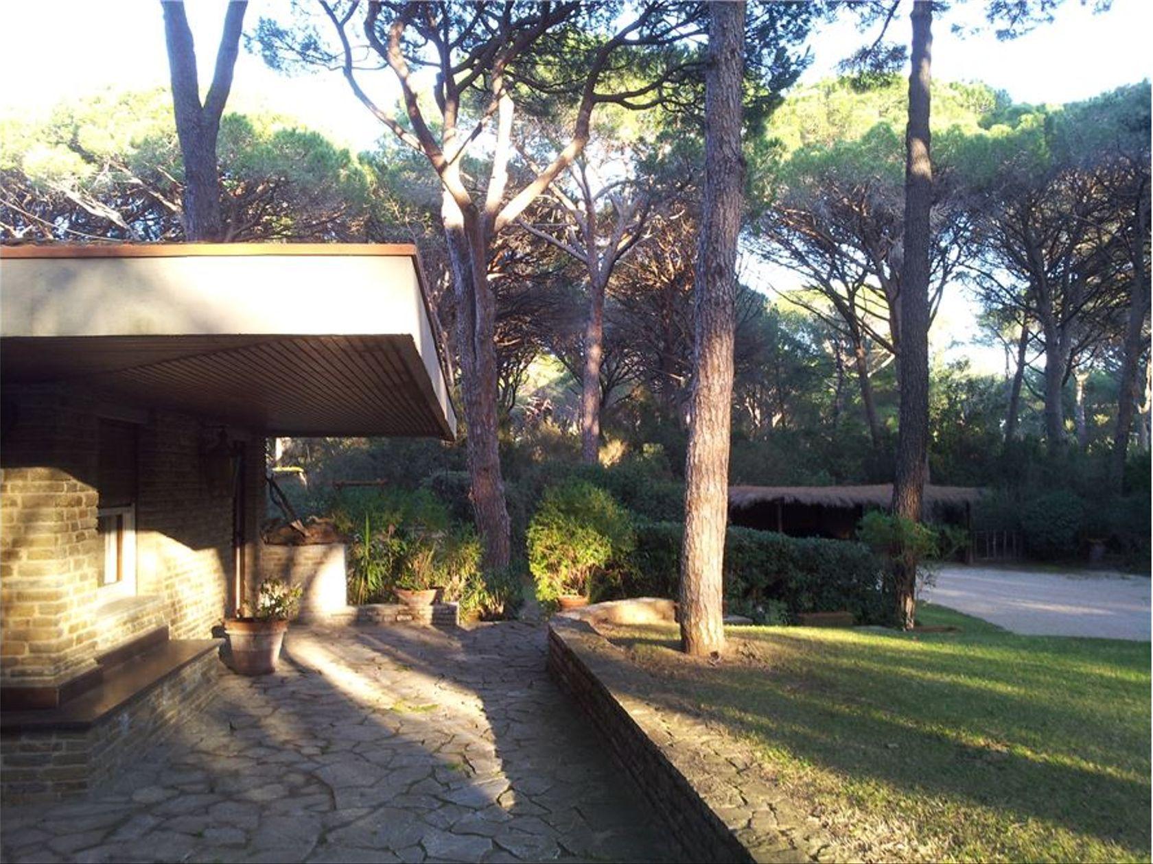 Villa singola Castiglione della Pescaia, GR Vendita - Foto 13