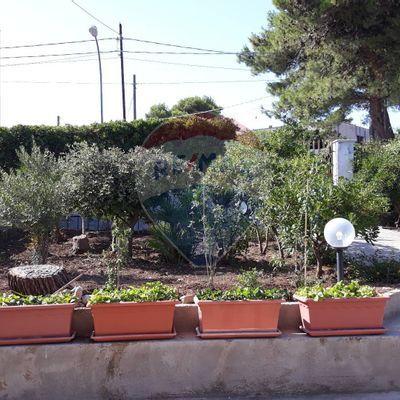 Casa Indipendente Valderice, TP Vendita - Foto 3